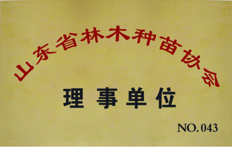 山东省林木种苗协会理事单位
